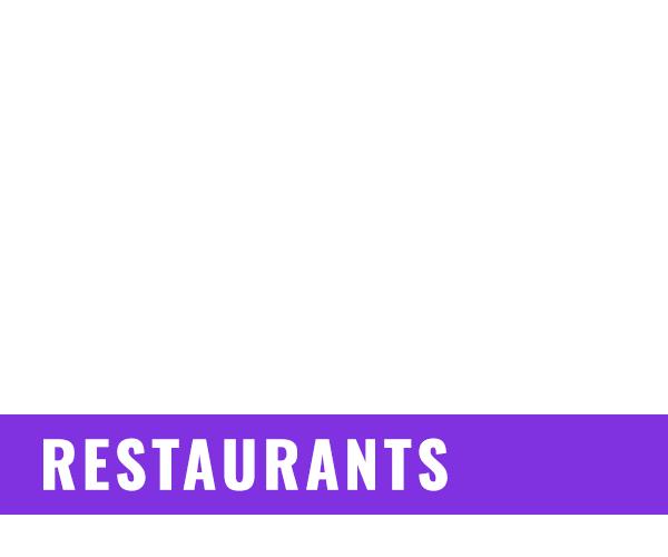 UFO Lighting Distributor - Restaurants